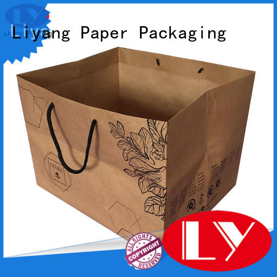 ODM recycled paper bags free sample for girl Liyang Paper Packaging